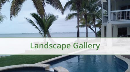 gallery cover landscape